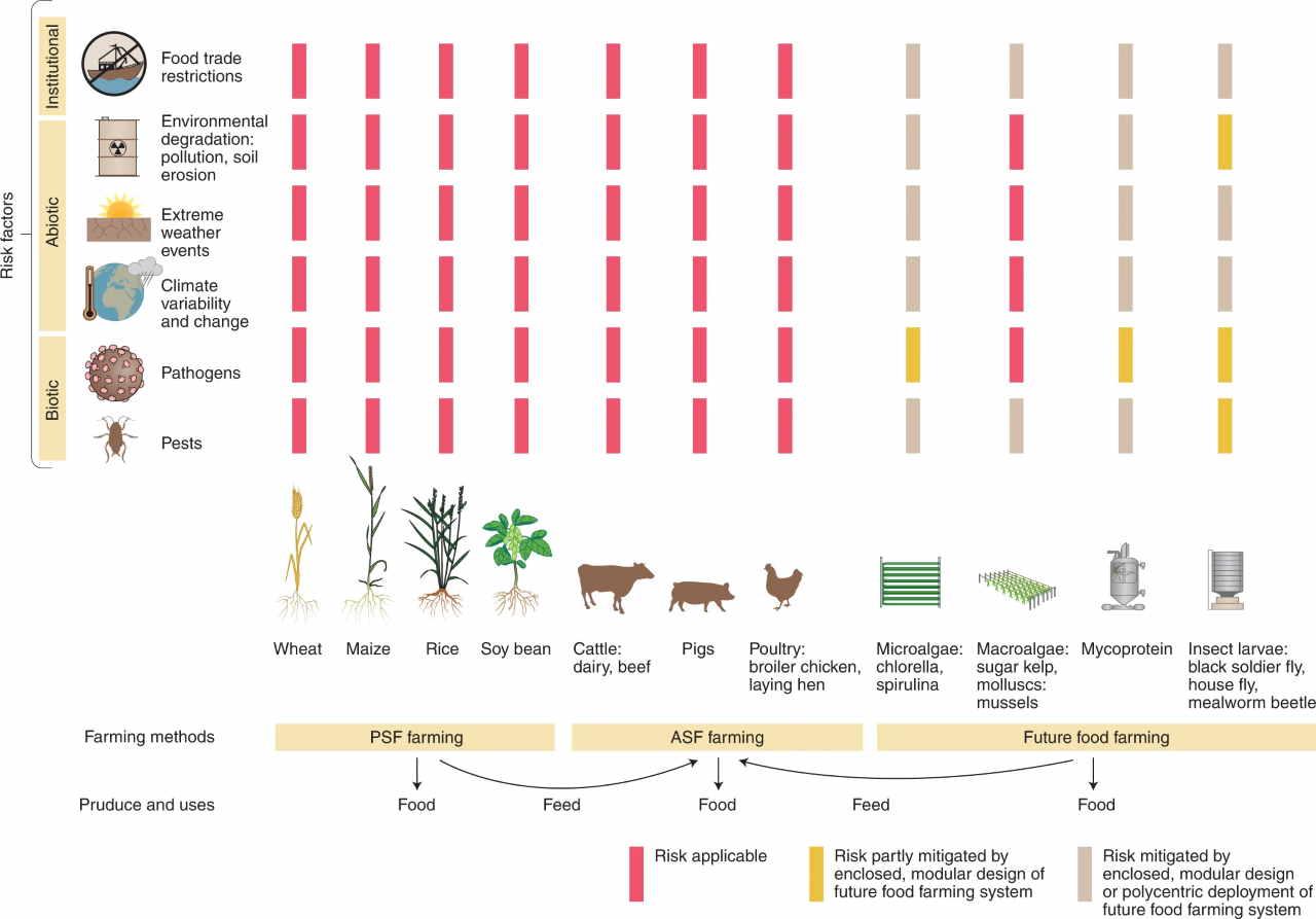 spirulina e larve di mosche contro la crisi alimentare