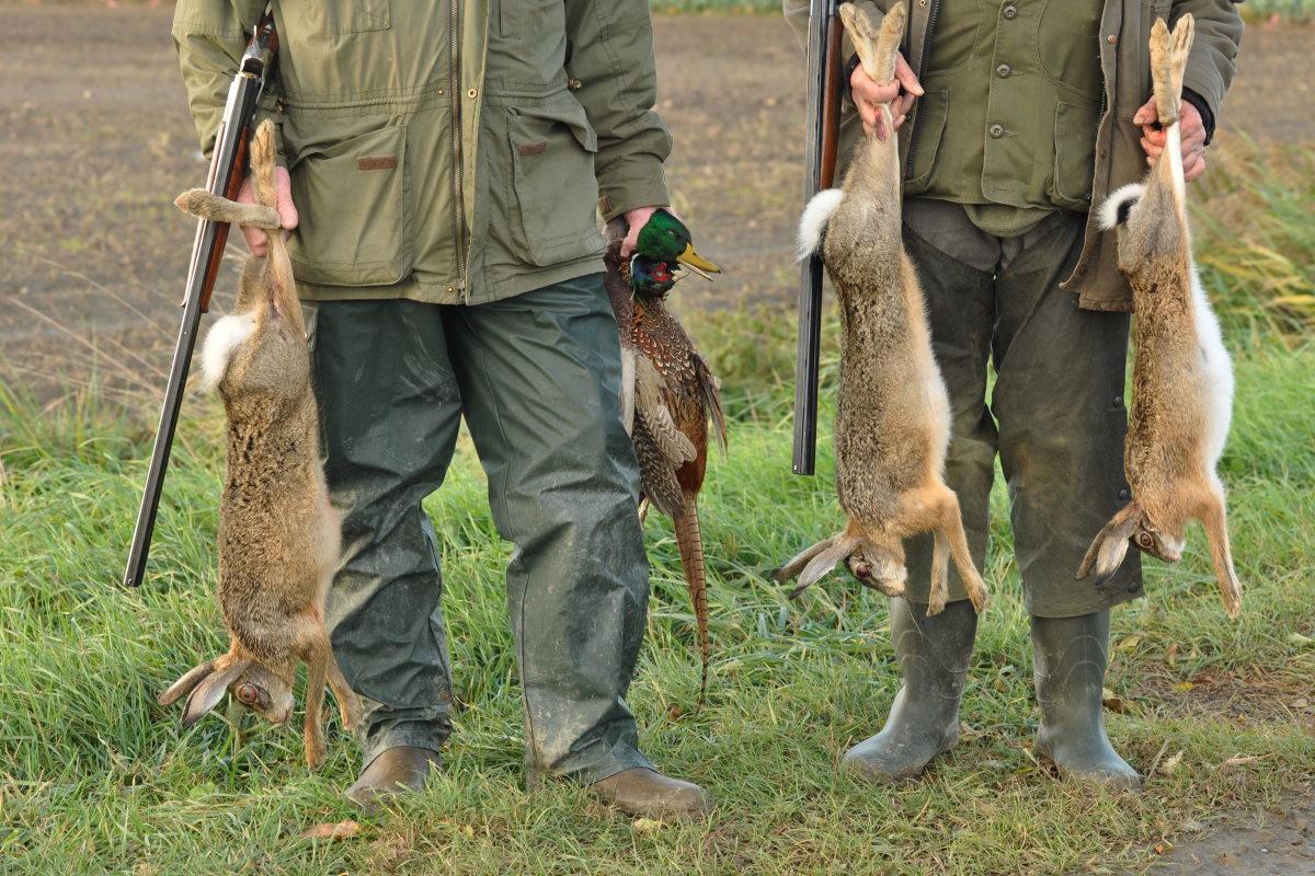caccia selvaggina