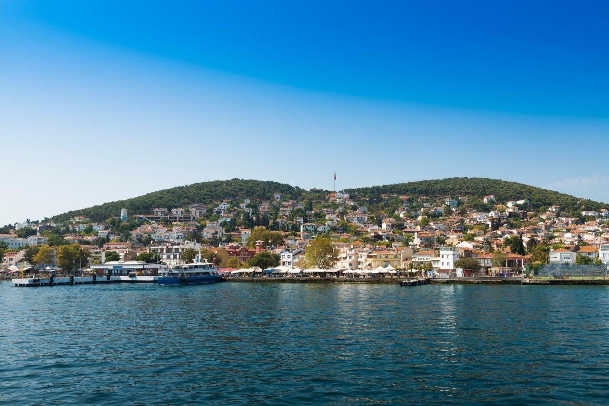 muco marino turchia