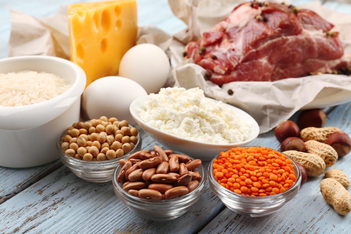 proteine animali rischi