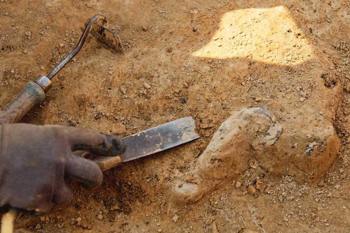 archeologo scava piccola pompei verona
