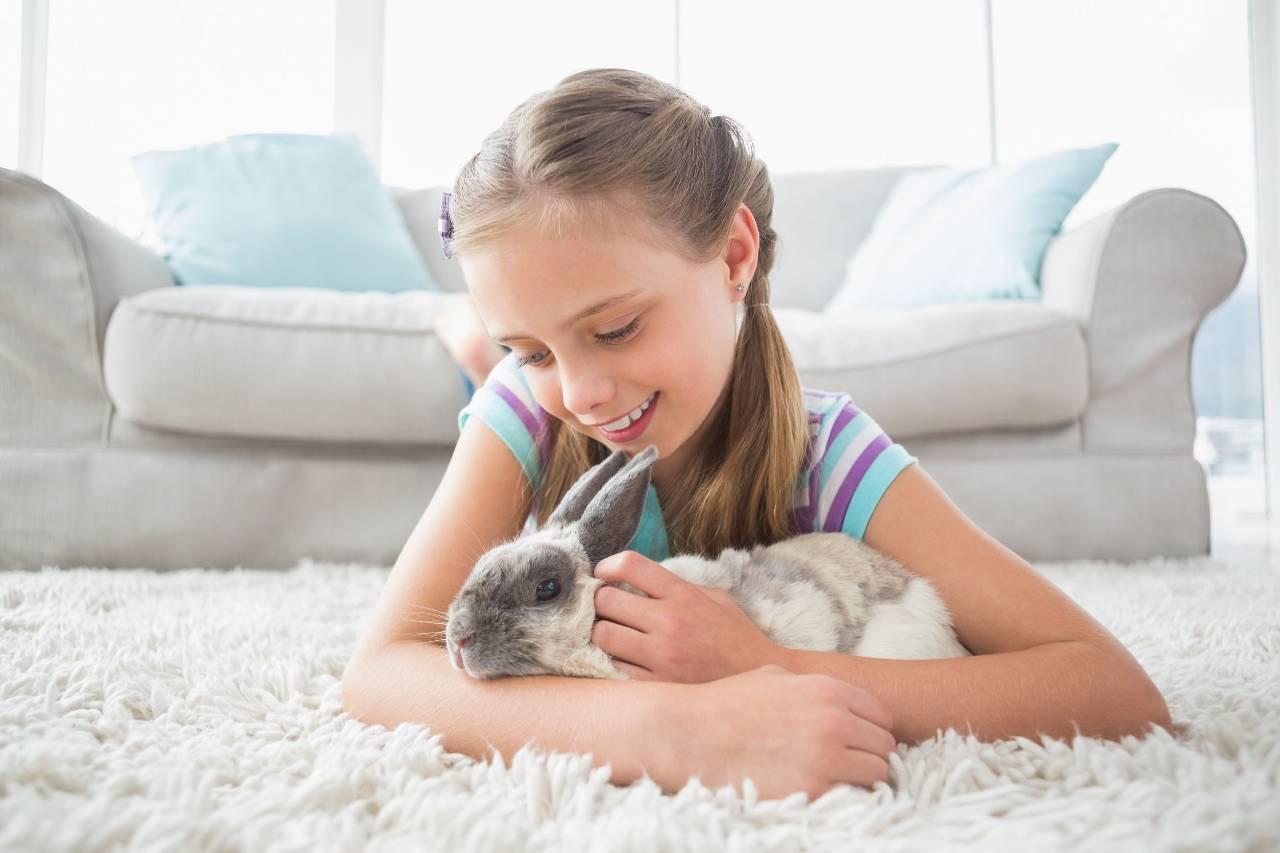 coniglio domestico antiparassitari tossici fipronil