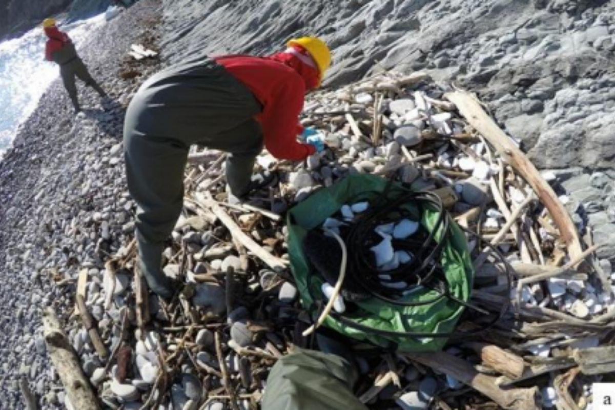 rifiuti plastica gargano