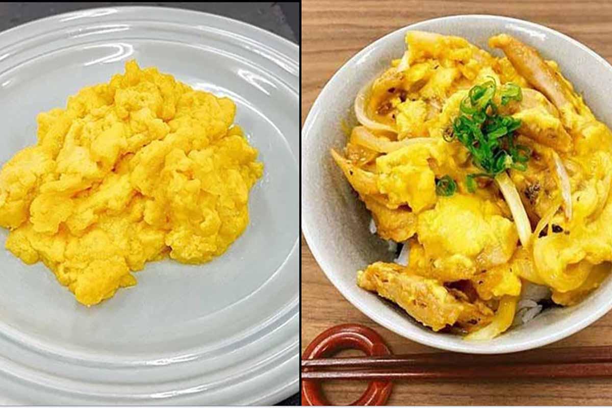 next egg uova 100% vegetali