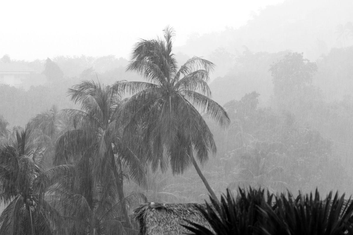 pioggia estrema