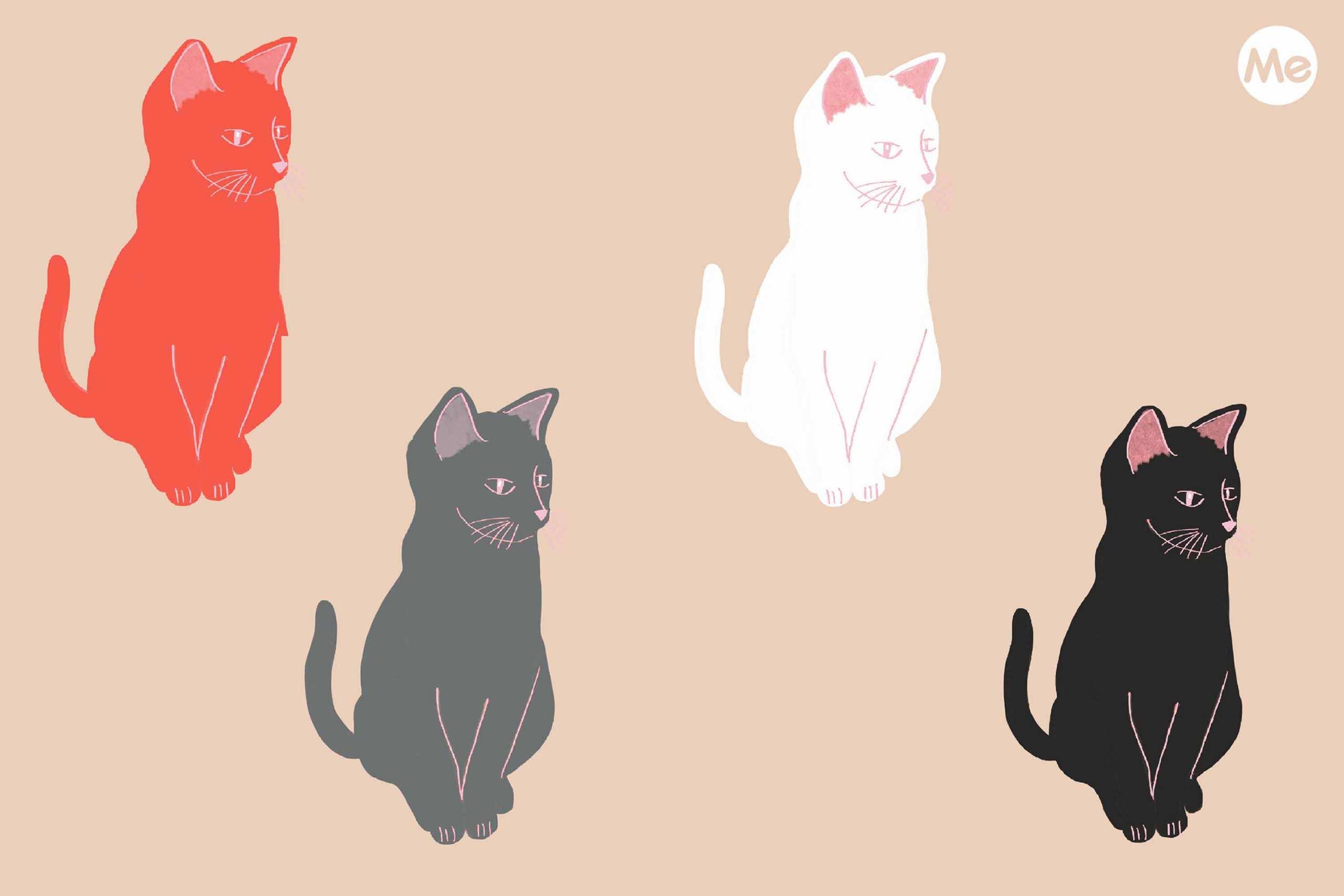 test gatti