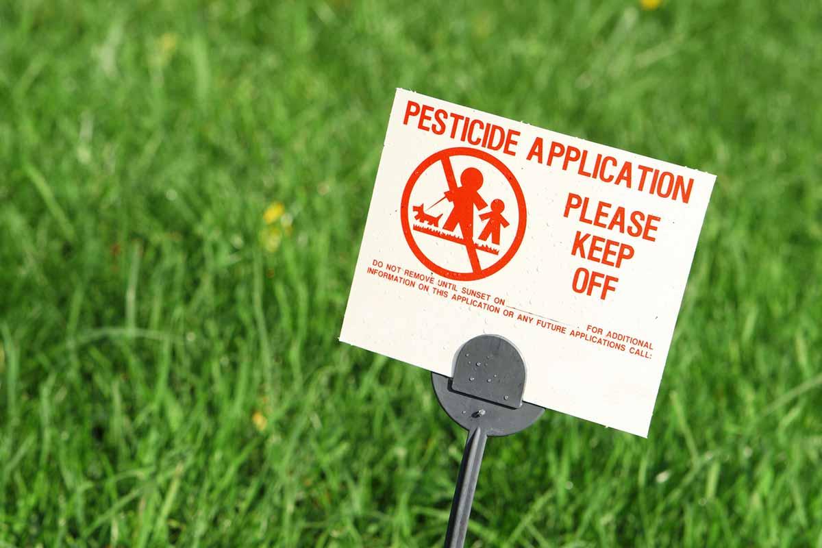 nuovi pesticidi agricoltura tossici