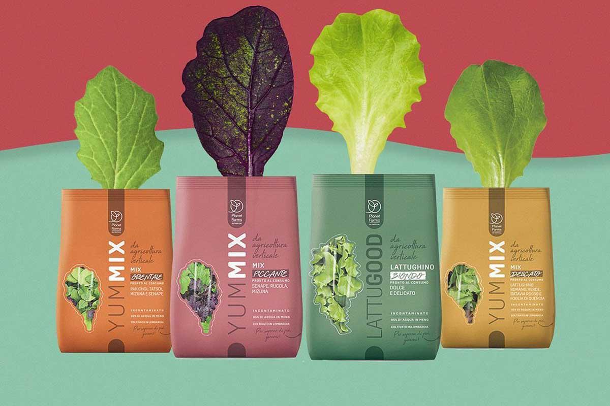 insalate verticali senza pesticidi supermercato